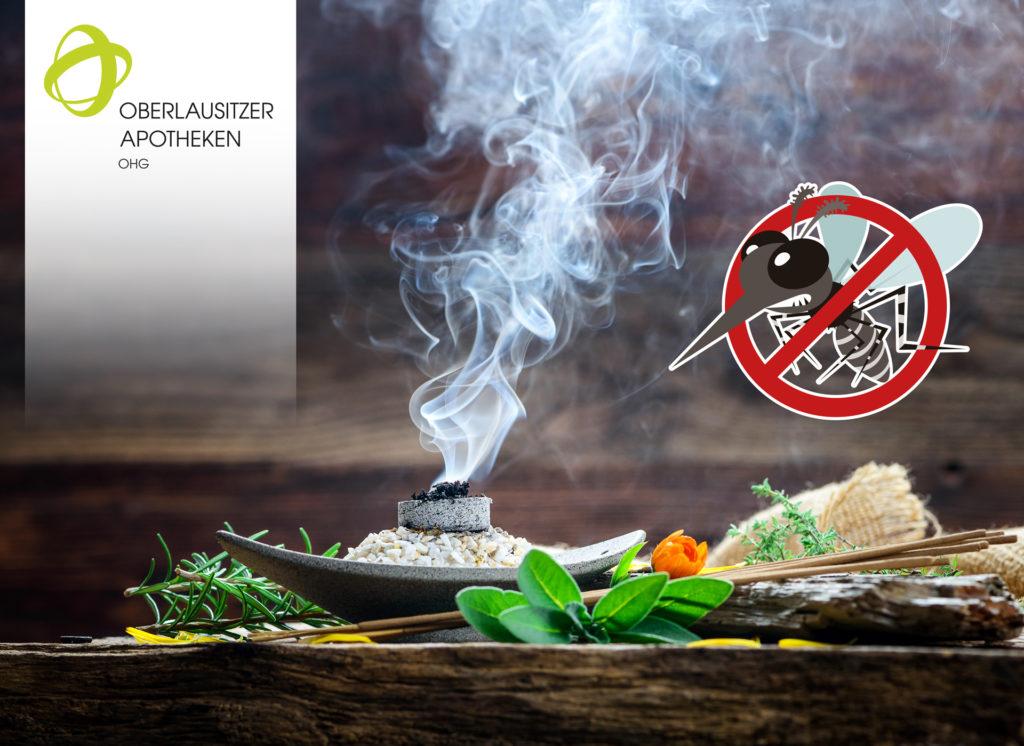 Bitte kein Gift wenn die Stechmücken kommen!!